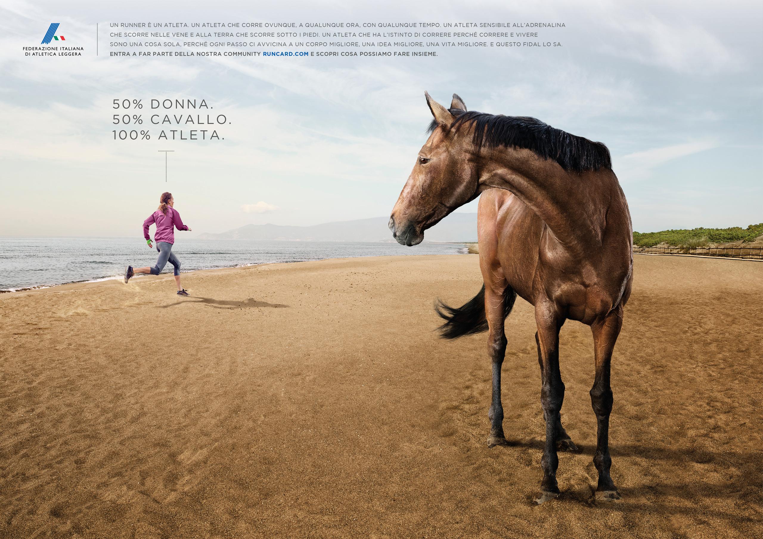 CavalloFidal.jpg